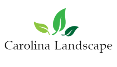 Carolina Landscape
