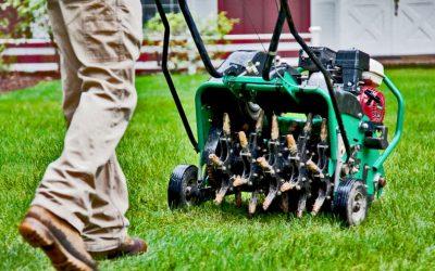 Lawn Aeration & Overseeding