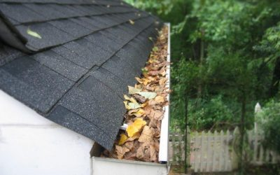 Gutter Cleaning, Gutter Clean out, Clean Leaf out of Gutters