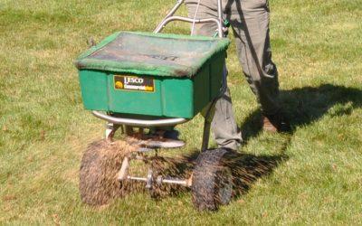 Lawn Fertilization