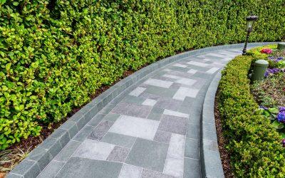 Paver Walkway, Stone Walkway, Hardscape Walkway