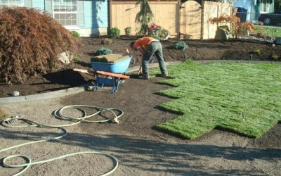 Sod Installation, Sod Installer, New Sod, Sod Company, Sod Contractor